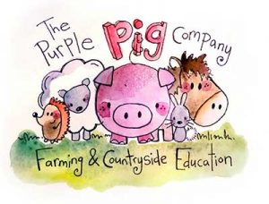The Purple Pig Company | Pocklington | Farm Zoo